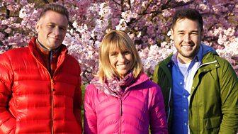 Springwatch - Springwatch In Japan: Cherry Blossom Time