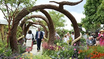 Hampton Court Palace Flower Show - 2017: Episode 2