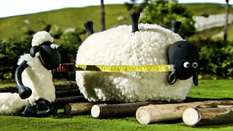 Shaun The Sheep - Series 1 - Shape Up With Shaun