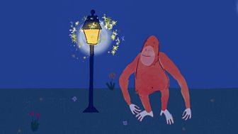 Pablo - Series 1: 12. The Sparkles