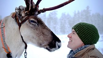 Reindeer Family & Me - Episode 02-01-2018