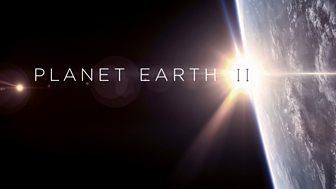 Planet Earth Ii - 1. Islands