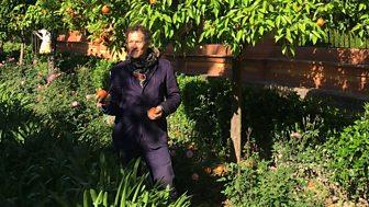 Monty Don's Paradise Gardens - Series 1: Episode 1