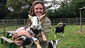 Ferne And Rory's Vet Tales - Series 1: 5. Spritz And Blitz The Goats
