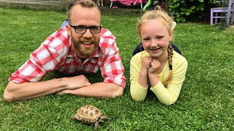 Ferne And Rory's Vet Tales - Series 1: 7. Turbo The Tortoise