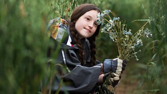 The Worst Witch - Series 2: 7. Hollow Wood