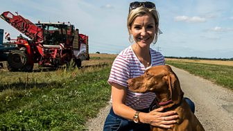 Countryfile - Harvest