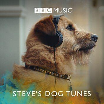 Steve's Dog Tunes