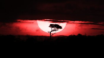 Programme image from Document: Kenya's Bloody Summer