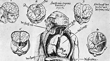 Programme image from The Making of Modern Medicine: Episode 5: The Anatomical Renaissance