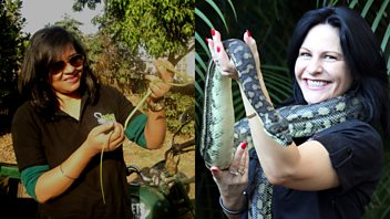 Programme image from The Conversation: Snake Rescuers: Dr Madhurita Gupta and Julia Baker