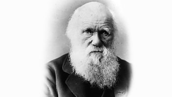 Programme image from Great Lives: Charles Darwin