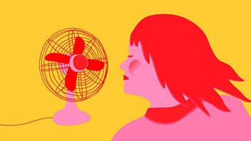 Programme image from Woman's Hour: Menopause and treatments, Meg Matthews, DPP Alison Saunders