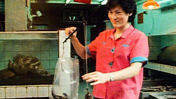 Programme image from Ken Hom's Chinese Cookery: Fish