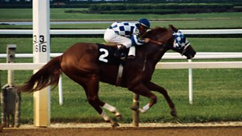 Programme image from Sporting Witness: Secretariat - America's superstar racehorse