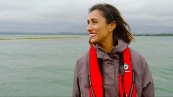 Programme image from Countryfile: Chichester Harbour