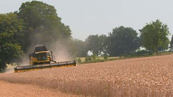 Programme image from Countryfile: Harvest Special