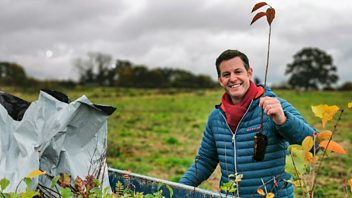 Programme image from Countryfile: Plant Britain