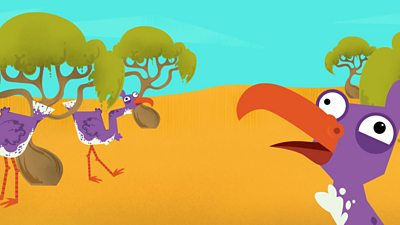 The zig-zag birds wandering in the desert.