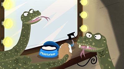 Find out about reptiles in this short Bitesize Primary KS1 animation.