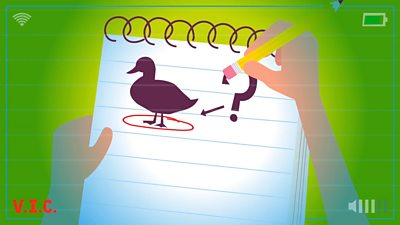 A duck on some lined paper