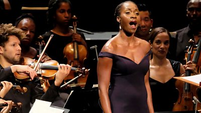 Chineke! The story of a concert that went viral