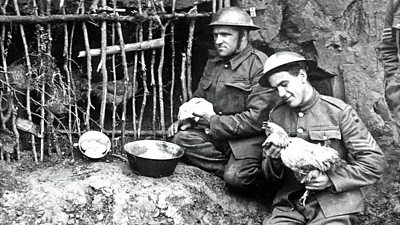 Two British soldiers keeping chickens in the trenches during World War One