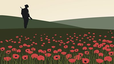 A silhouetted soldier on a poppy-filled hill