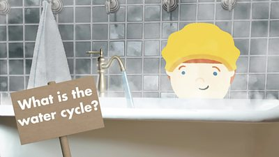 What is the water cycle? Where does the water in our taps come from?