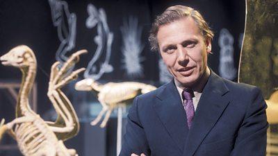 Sir David Attenborough looks at animal skeletons