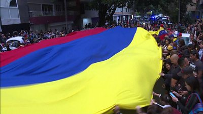 Flag of Venezuela carried by protesters.