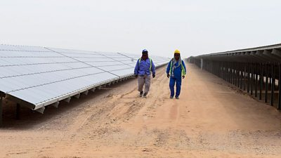 A solar farm in Dubai