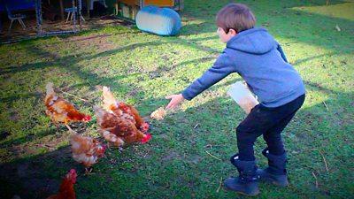 George feeding chickens