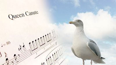 The sheet music and a seagull