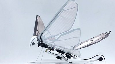 An insect inspired drone MetaFly