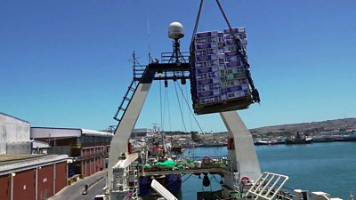 fish being craned out of a trawler hold in South Africa