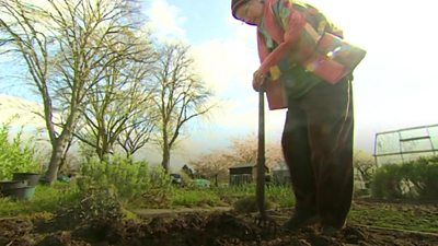 Gardeners have grown vegetables at the site for 120 years.