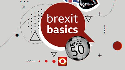 Collage with the words Brexit Basics and Article 50