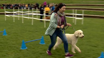 Pooch politics: Holyrood Dog of the Year competition held
