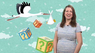 Female presenter in front of a depiction of a stork carrying a baby and alphabet blocks