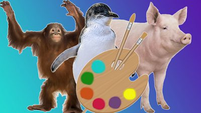 Orangutan-penguin-pig-and-paint-palette.