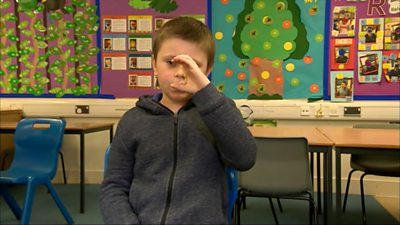 Makaton sign language