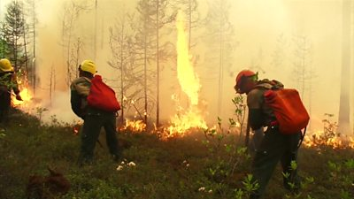 Firefighters tackle Siberian fires