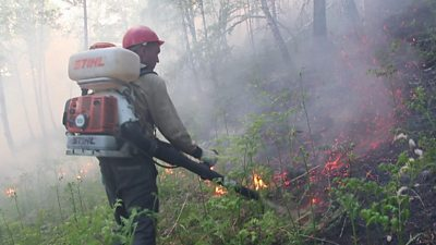 Firefighter tackles wildfire in Krasnoyarsk region, Russia. Photo: 31 July 2019