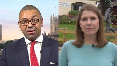James Cleverly and Jo Swinson