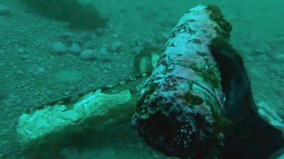 WW2 explosives cleared from shipwrecks in Canada