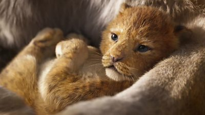 Simba the lion in a scene from The Lion King