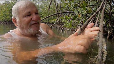 Haidar el Ali in the water