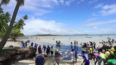 Oil hits Brazil beaches