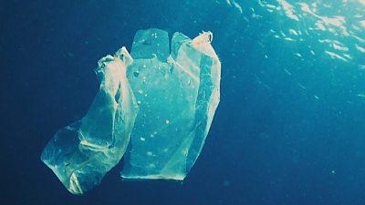 Plastic bag floating